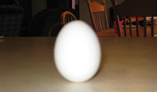 Egg-cellent!