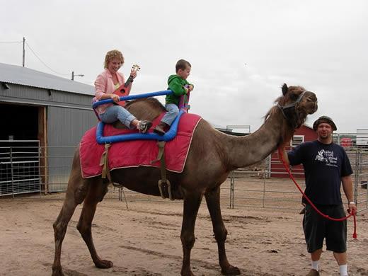camel ukulele