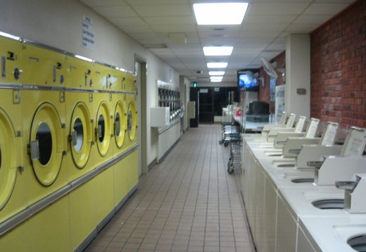 rows of washing delight